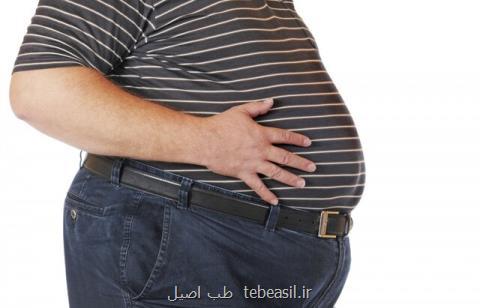 نقش آفت کش ها در بروز چاقی