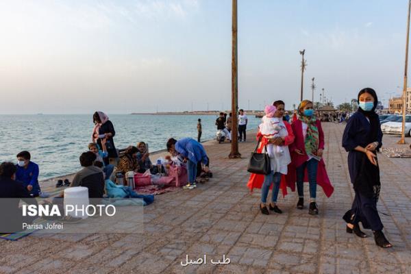 معاون استاندار بوشهر: وضعیت بسیار نگران کننده استان بوشهر
